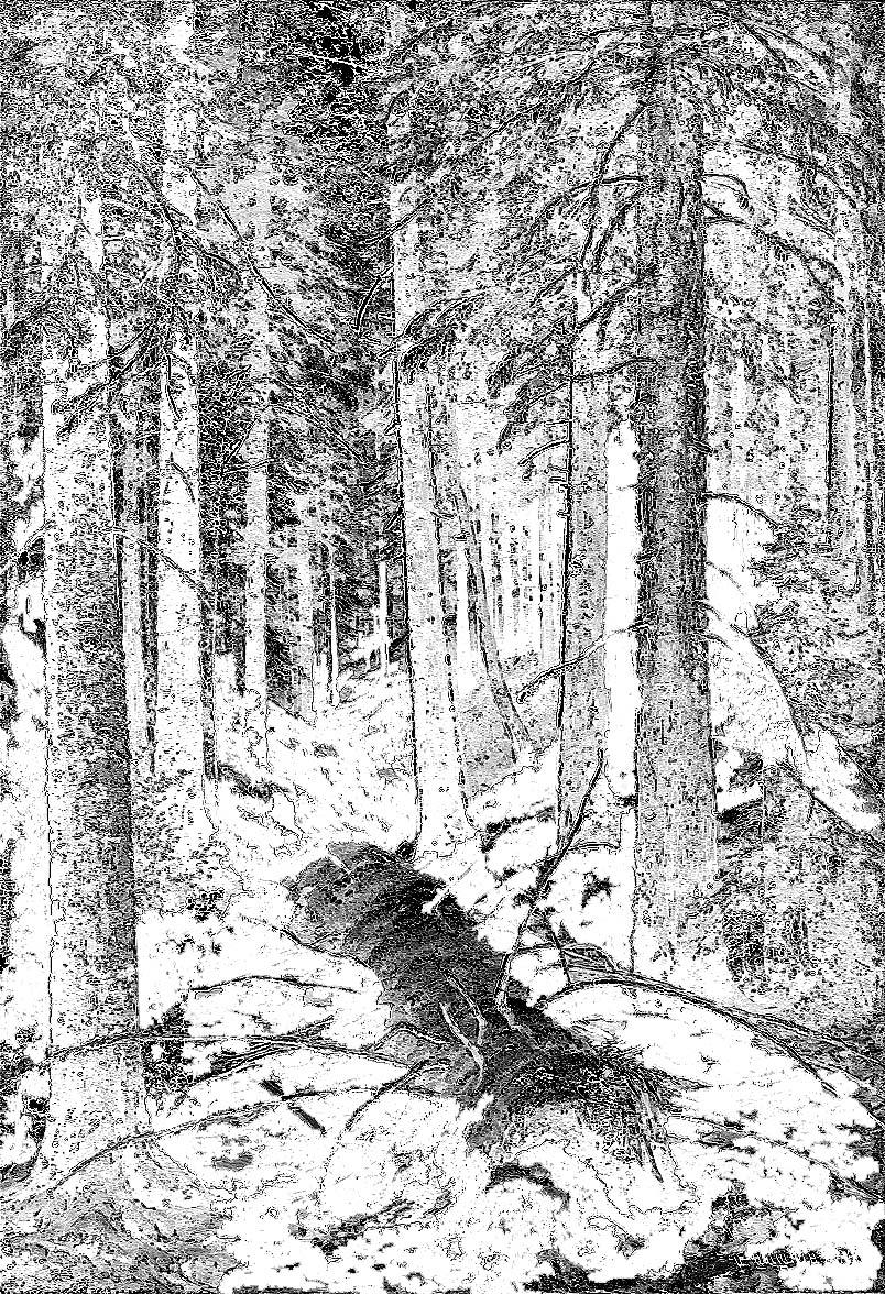 Schischkin, Im russischen Wald
